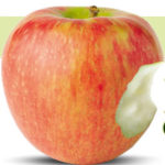 honeycrisp-apple