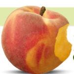 Kelowna organic peaches