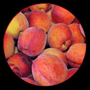 organic peaches - Kelowna